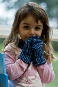 Cascade Yarns®  Free 220 Superwash®  pattern W428 Blue Zig Zag Cild's Mittens